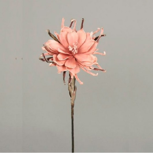 Vara crisantemo salmón flor