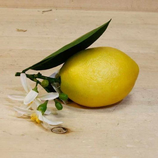 Fruta - Limón y flor 13cm