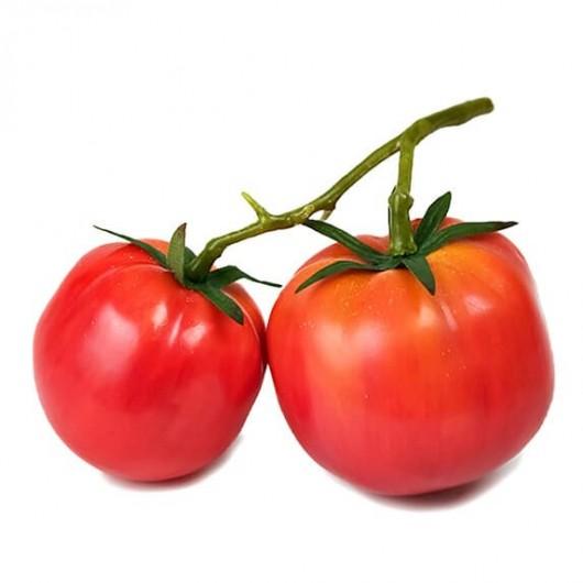 Hortaliza - Tomates de Rama...