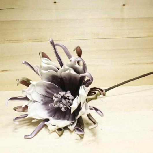 Crisantemo araña púrpura
