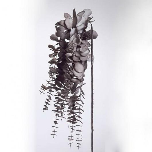 Eucaliptus foam colgante plata