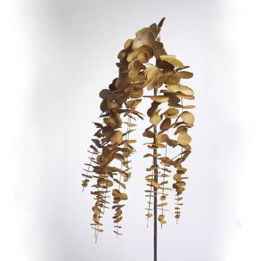Eucaliptus foam colgante oro